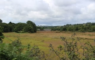 Plot of green land in Devoran by the creek